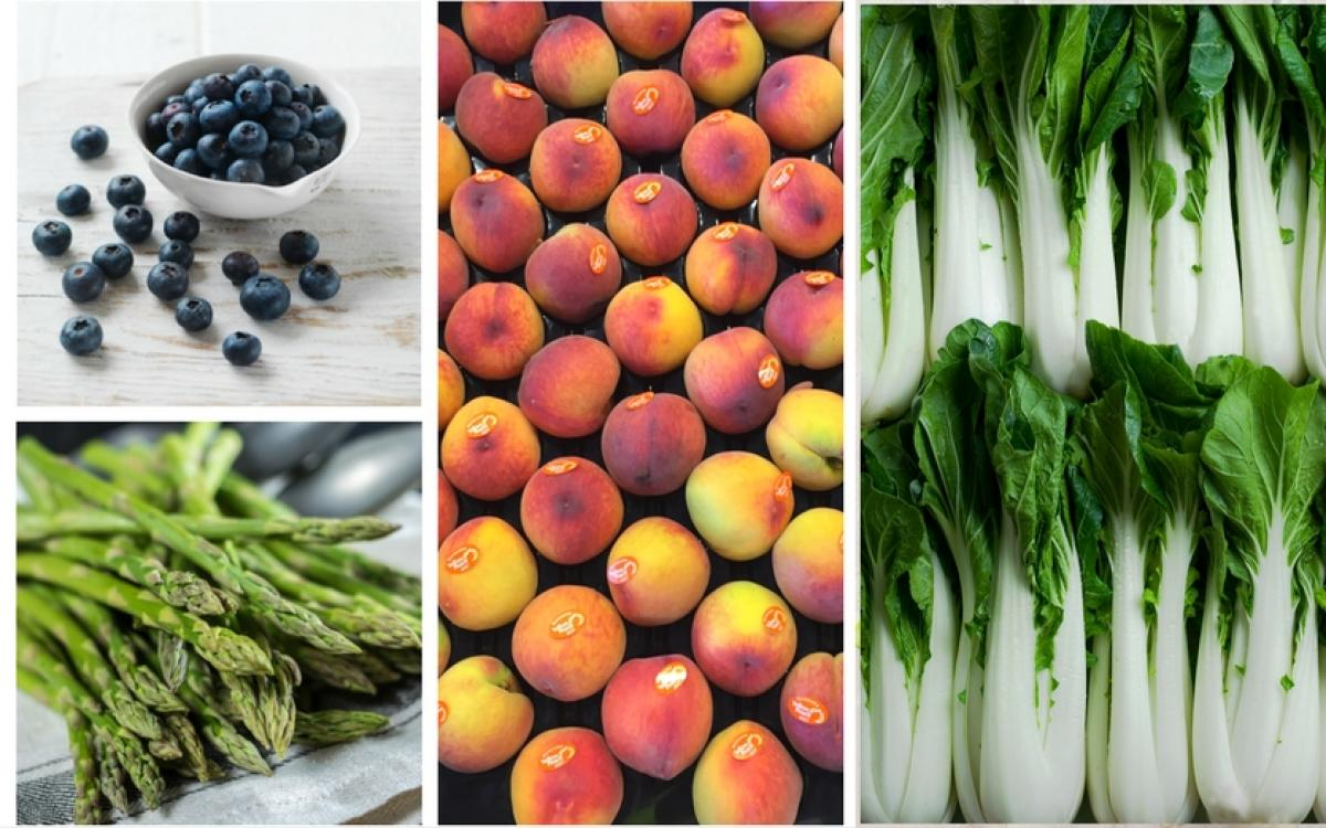 Sydney Markets What S In Season In November Your Premium Fruit And Vegetable Guide