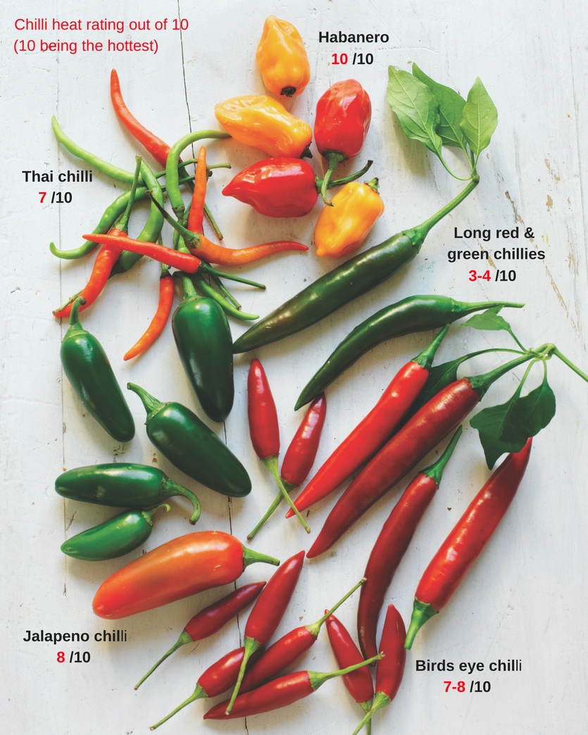 Sydney Markets - Some like it HOT - Know your chillies and